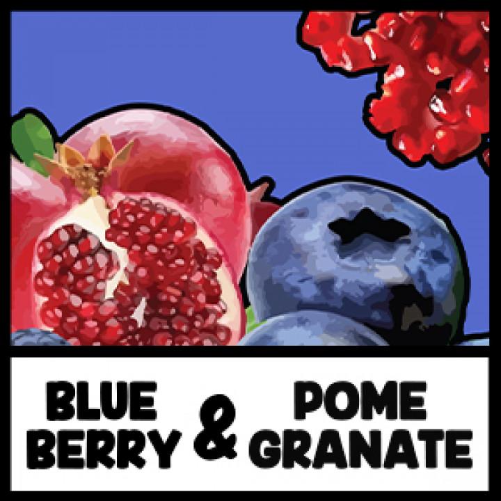 VIVID - Blueberry&Pomegranate