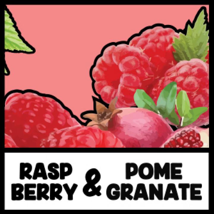 VIVID - Raspberry&Pomegranate
